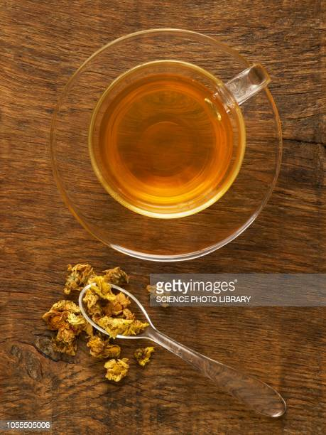 herbs used to make herbal tea - chamomile tea stock photos and pictures