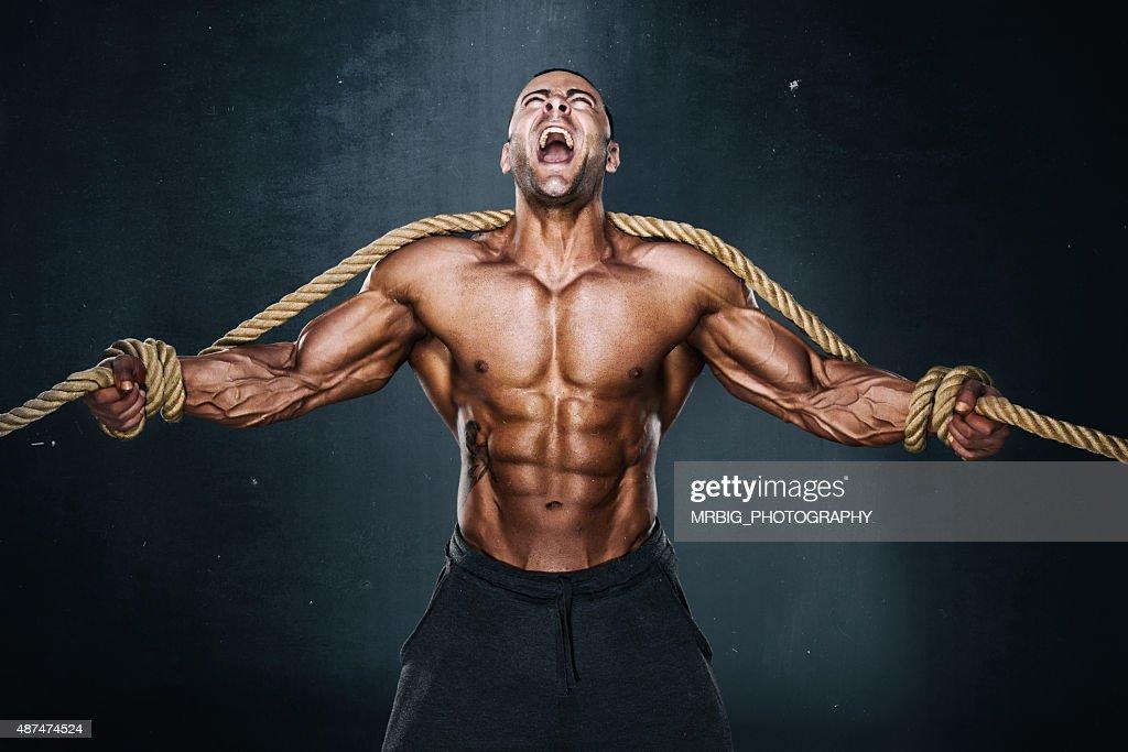 Hercules : Stock Photo