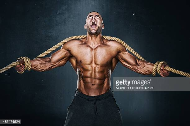 hercules - body building stock pictures, royalty-free photos & images