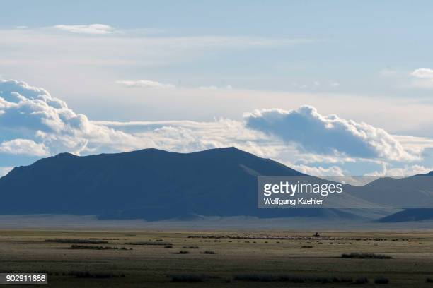 A herder with his herd in the grasslands of Hustain Nuruu National Park Mongolia