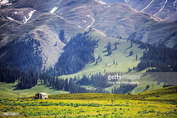 herder's lodge on nalati grassland - tien shan mountains stock pictures, royalty-free photos & images