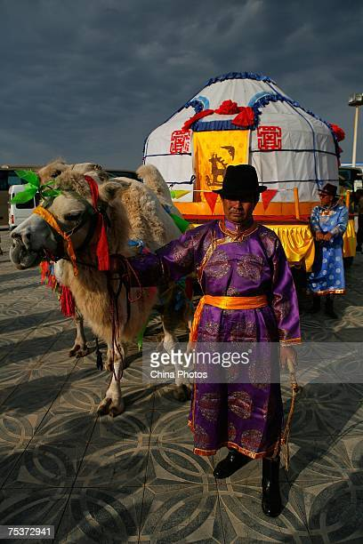 A herdman leads a giant cart containing the world's tallest man Bao Xishun to meet his bride Xia Shujuan during their traditional Mongolian wedding...
