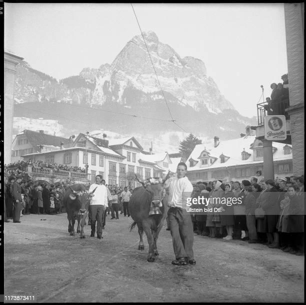 Herdsmen fair in Schwyz 1959