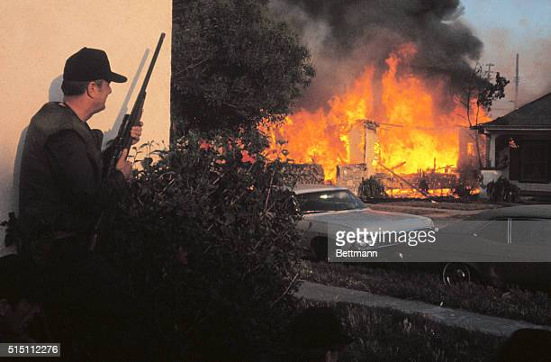 Here is one of the scenes from last night's shootout between police and Symbionese Liberation Army gunmen A Los Angeles Police Officer hods a shotgun...