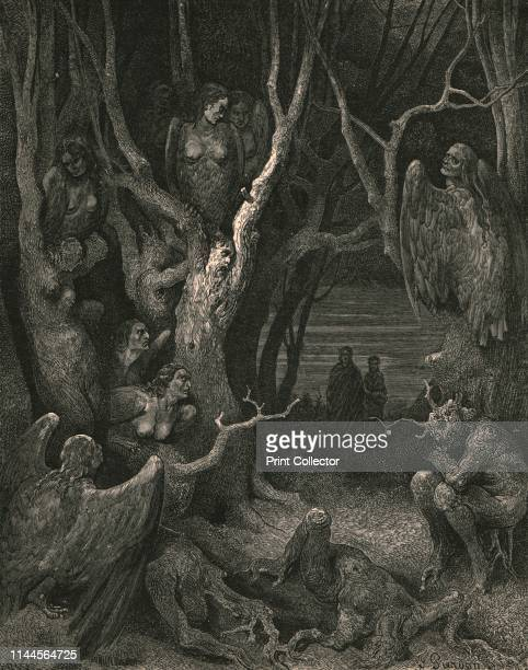 Here the brute Harpies make their nest' circa 1890 Illustration from The Vision of Hell the first part of The Divine Comedy by Dante Alighieri This...