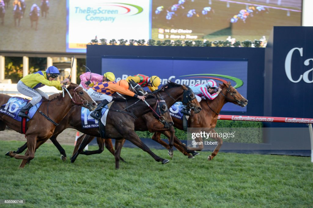 Here to There (NZ) ridden by Ethan Brown wins Thebigscreencompany.com.au Plate at Caulfield Racecourse on August 19, 2017 in Caulfield, Australia.