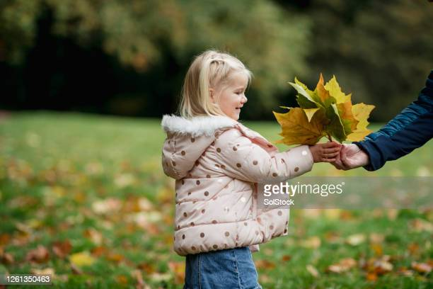 here you go - toddler stock pictures, royalty-free photos & images