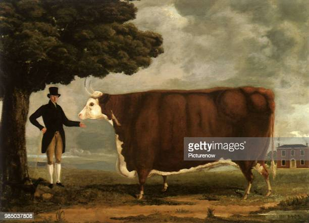 Hereford Ox and Owner, Unknown artist..