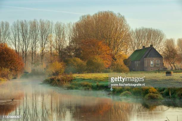 herfst in nederland - reizen stock pictures, royalty-free photos & images