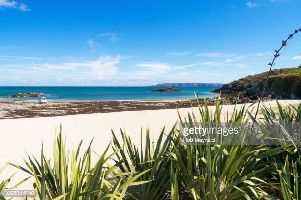 herm island beach - isola di guernsey foto e immagini stock