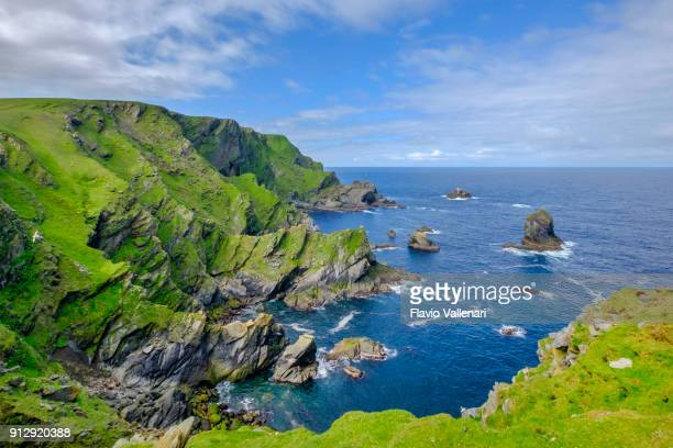 hermaness national nature reserve, a dramatic cliff-top setting and a refuge of thousands of seabirds; it is the britain's most northerly point, located on the island of unst, shetland islands, scotland. - scotland imagens e fotografias de stock