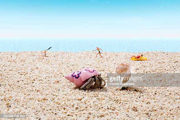 Hermit crab and figurines on beach (focus on crab in foreground)