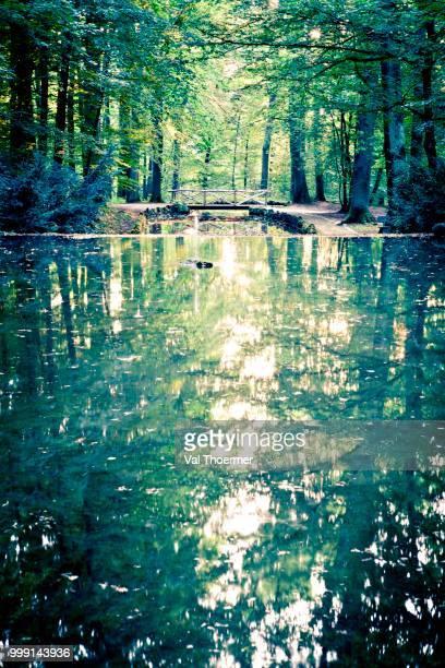 hermitage grounds, bayreuth, bavaria, germany - val thoermer stock-fotos und bilder