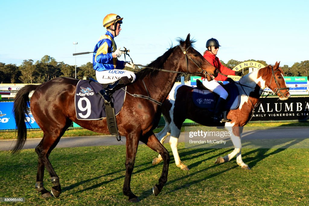 Hero Master ridden by Lachlan King returns to the mounting yard after winning the No Fuss Event Hire BM70 Handicap at Bendigo Racecourse on August 13, 2017 in Bendigo, Australia.