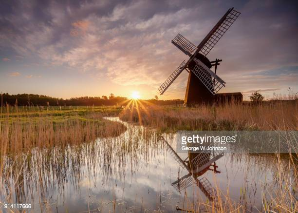 herringfleet windmill - east anglia stock pictures, royalty-free photos & images