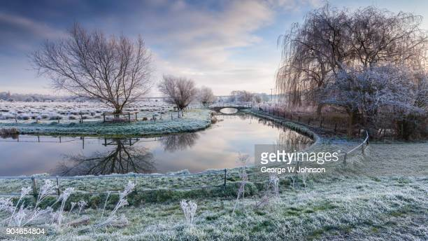 hertford marshes xv - frost stock pictures, royalty-free photos & images