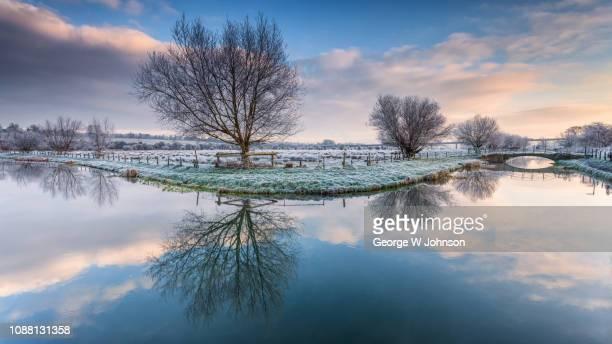 hertford marshes xvi - hertford hertfordshire stockfoto's en -beelden