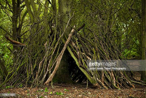 herts_walking_19 - sheltering stock pictures, royalty-free photos & images