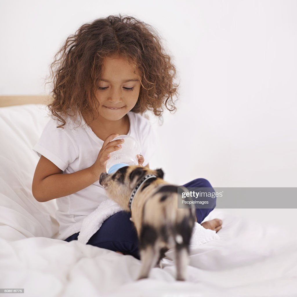 He's the best piggy in the whole wide world : Stock Photo