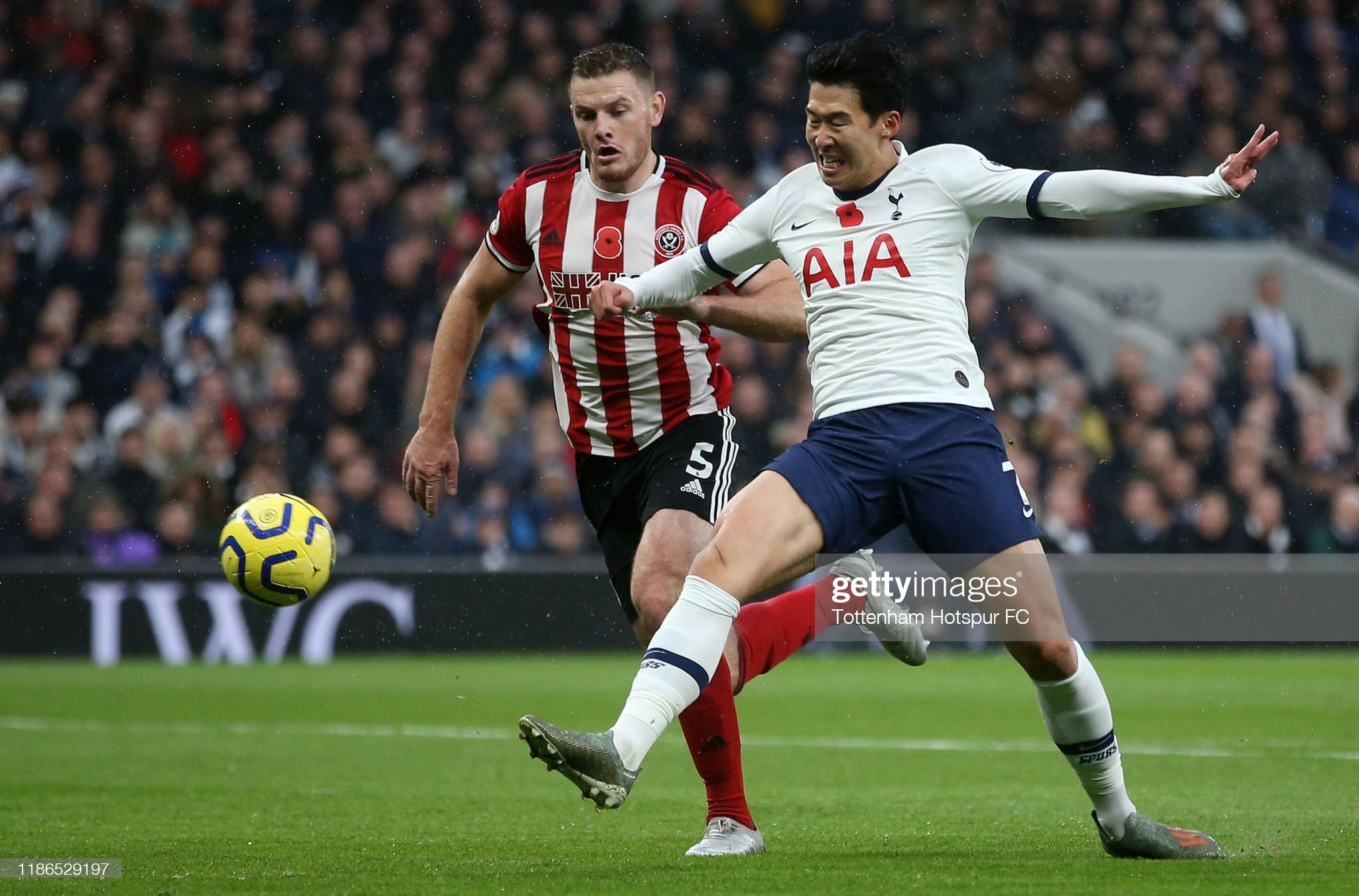 Sheffield United vs Tottenham preview, prediction and odds