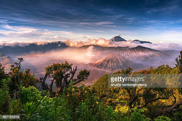 heven - mt bromo stock photos and pictures