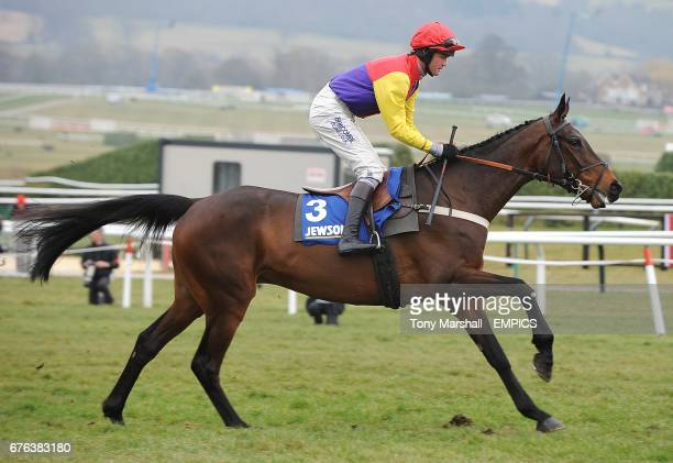 Hey Big Spender ridden by jockey Jo Tizzard prior to the Jewson Novices' Handicap Chase