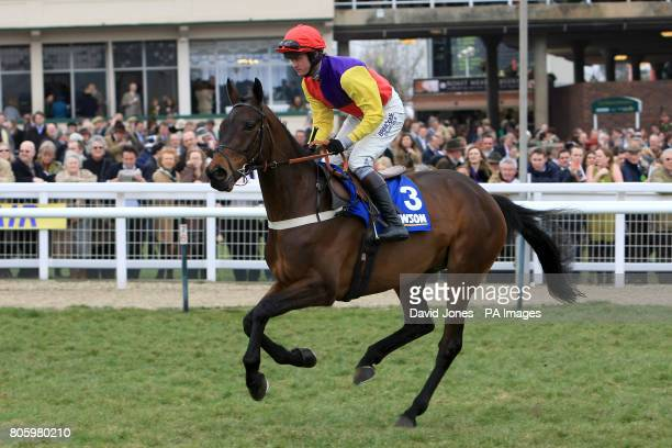 Hey Big Spender ridden by jockey Joe Tizzard prior to the Jewson Novices' Handicap Chase