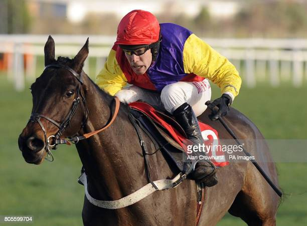 Hey Big Spender ridden by Tom Scudamore win The sportingbetcom Novices' Chase during the Hennessy Gold Cup Day at Newbury Racecourse Berkshire