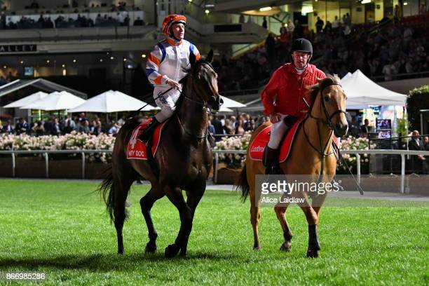 Hey Doc ridden by Luke Currie returns after winning the Ladbrokes Manikato Stakes at Moonee Valley Racecourse on October 27 2017 in Moonee Ponds...
