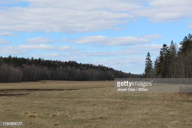hågadalen - valley stock pictures, royalty-free photos & images