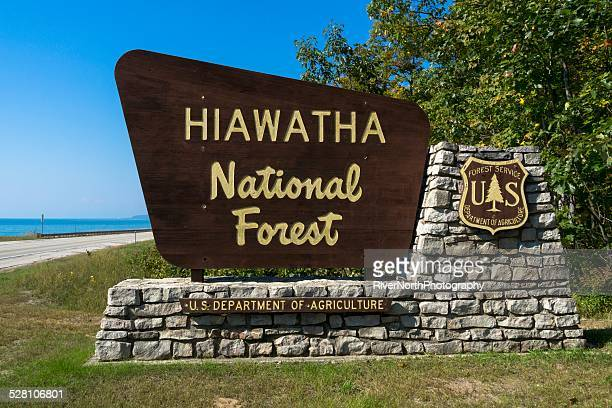 hiawatha national forest - hiawatha national forest stock pictures, royalty-free photos & images