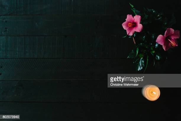 hibiscus & candle on a dark wooden table - christine wehrmeier stock pictures, royalty-free photos & images