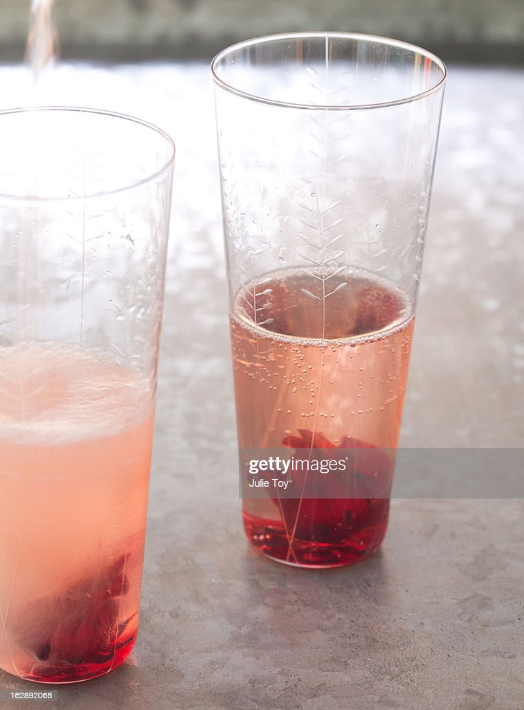 Hibiscus Flower Champagne Stock Photo Getty Images