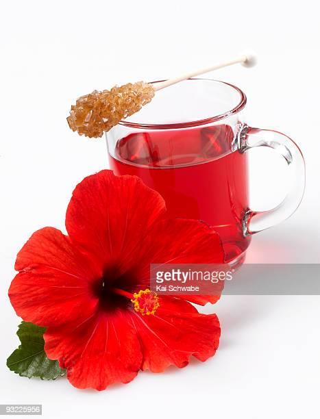 Hibiscus flower tea and hibiscus flower, close-up
