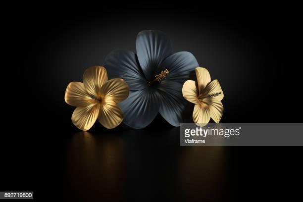 hibiskus gold - eleganz stock-fotos und bilder