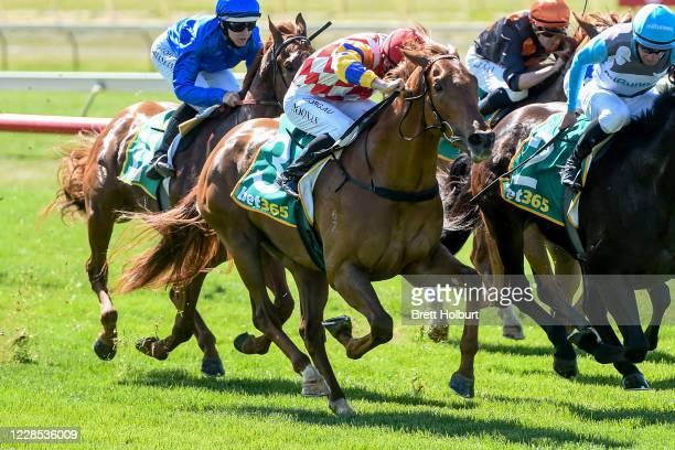 Hickok ridden by Jake Noonan wins the bet365 Top Tote Plus 3YO Maiden Plate at Bendigo Racecourse on September 16, 2020 in Bendigo, Australia.