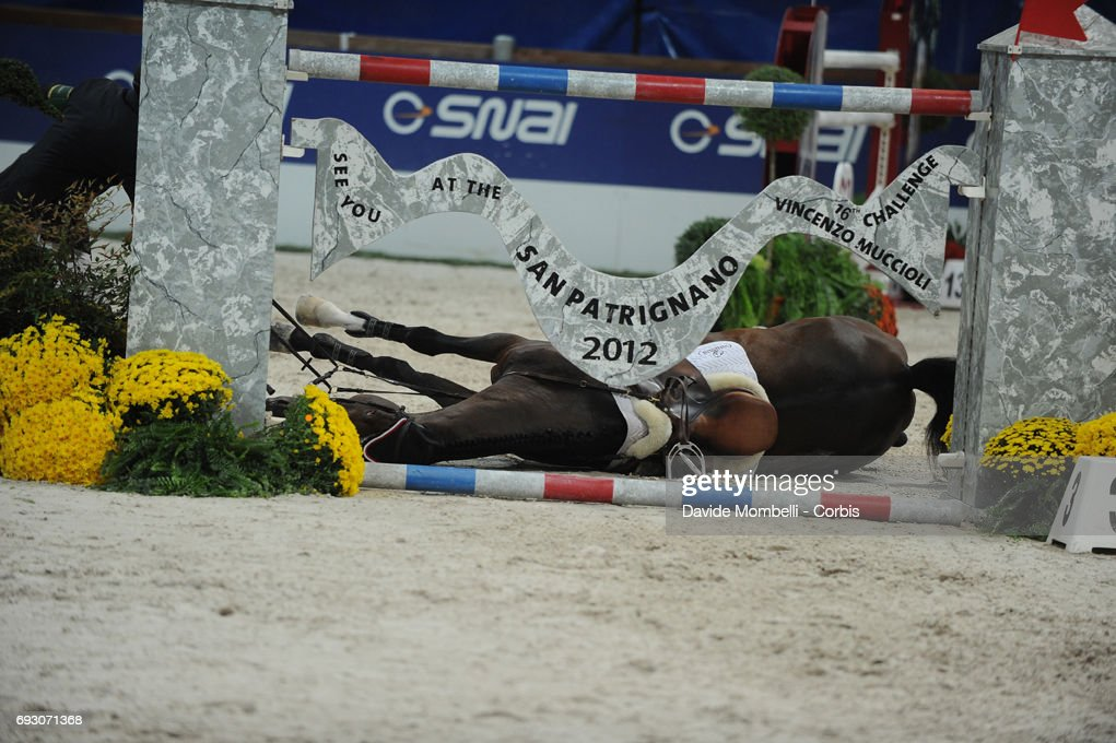Hickstead ridden by Eric Lamaze suffers a fatal fall during the Jumping Verona 2011 on November 6, 2011 in Verona, Italy.