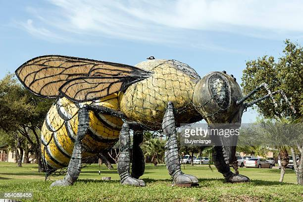Hidalgo Texas Killer Bee Statue a nod to a historical moment in October 1990 when the first known swarm of these Africanized bees was documented to...