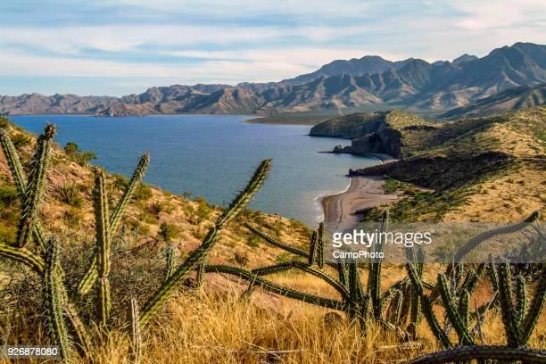 bahía baja oculta - paisajes de mejico fotografías e imágenes de stock