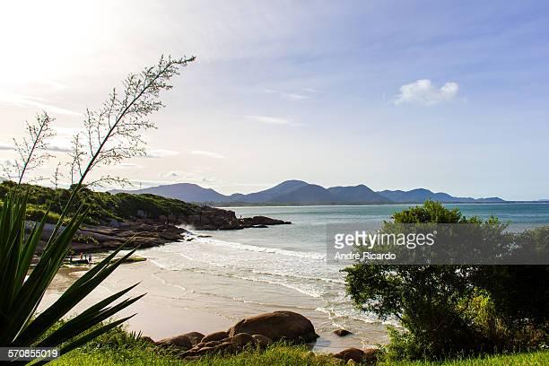 Hidden beach in Florianopolis island