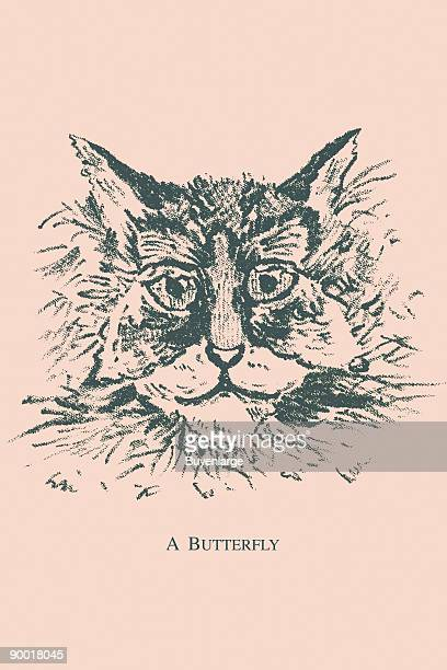 Hidden in this picture is a butterfly Where is it This image dates from the turn of the century and was the face of a trade card used as advertising...