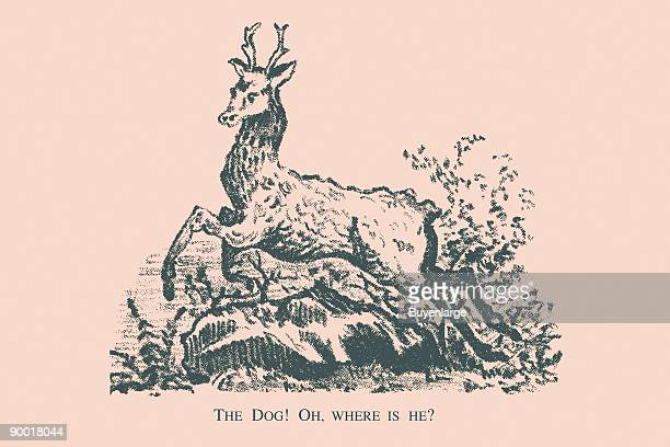 Hidden in this picture is a dog Where is he This image dates from the turn of the century and was the face of a trade card used as advertising The...