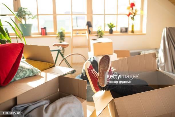 cacher et chercher pendant la maison de déménagement - demenagement humour photos et images de collection