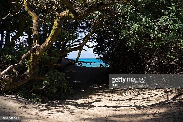 Hideaway, North Shore, Maui
