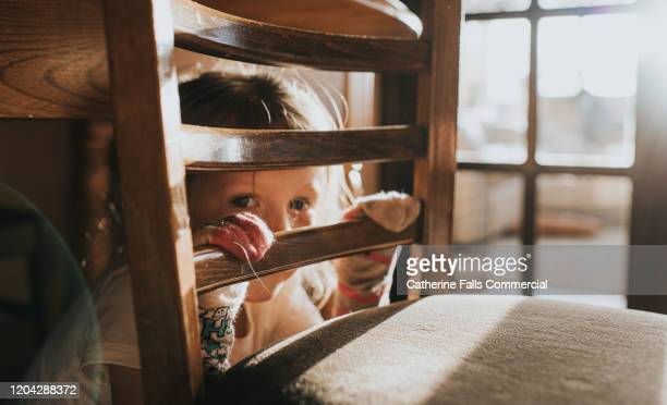 hiding - cushion stock pictures, royalty-free photos & images