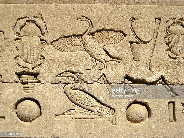 Hieroglyphic relief on the outer wall of the structure which houses the Hall of the Ennead and The Sanctuary Egypt Ancient Egyptian Graeco Roman...