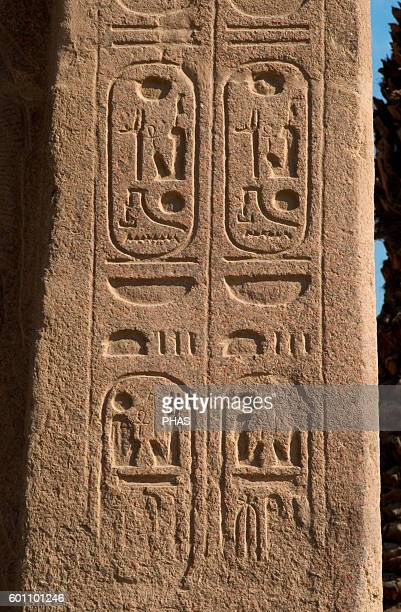 Hieroglyphic writing Cartridge Mit Rahina Open Air Museum Memphis Egypt