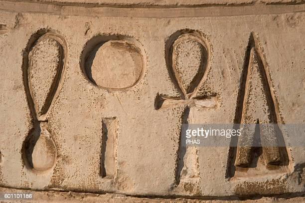 Hieroglyphic writing Mit Rahina Open Air Museum Memphis Egypt