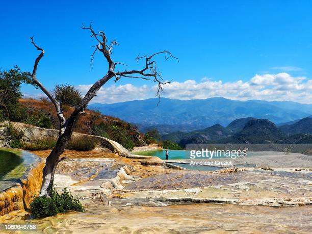 hierve el agua, oaxaca - oaxaca stock pictures, royalty-free photos & images