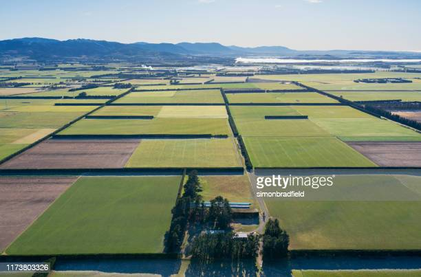 high above the canterbury plains, new zealand - christchurch stock pictures, royalty-free photos & images
